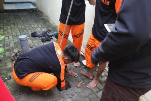IMG_0996 OSIS12SBY